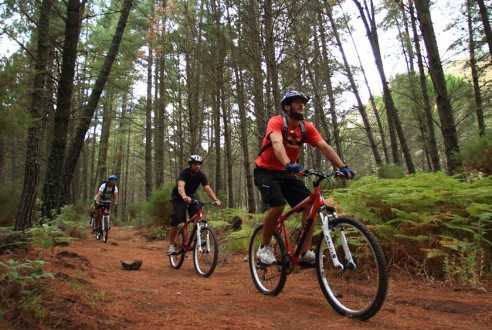 rutas-mountain-bike-aventuras-empresas-exploramas-2